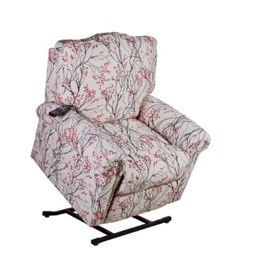 Coral Springs Three Position Therapedic Power Recline Lift Chair