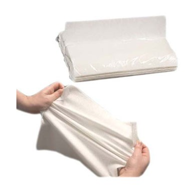 Prevail Disposable Dry Washcloth